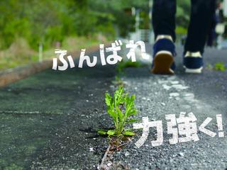 0613chirasi_gazou_moji_ari.jpg